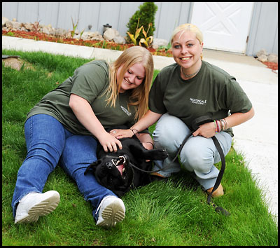 Dog Day Care Newbury Ma